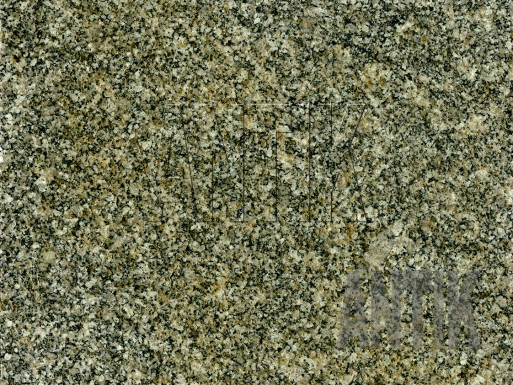 Texture Granit Real Grey