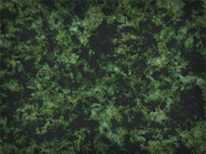 grüner Granit